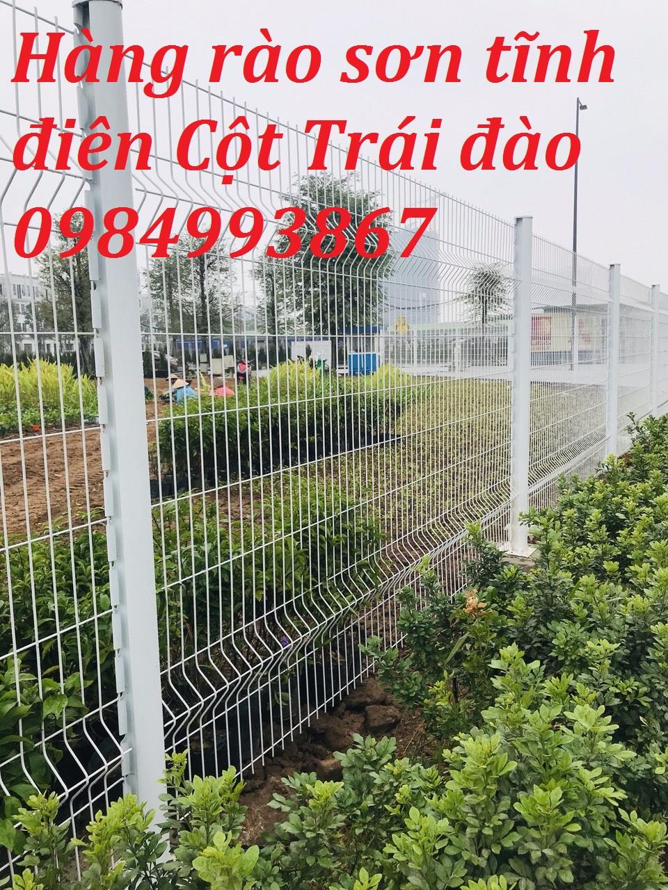 Lưới thép hàng rào bảo vệ công viên mạ kẽm sơn tĩnh điện 0984993867